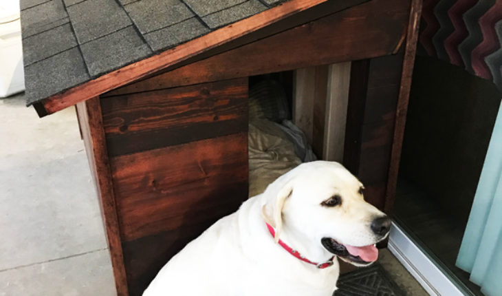 How-to-build-an-extra-large-dog-house