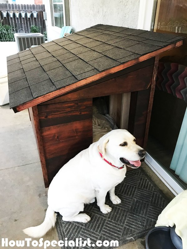 Diy Extra Large Dog House Howtospecialist How To Build