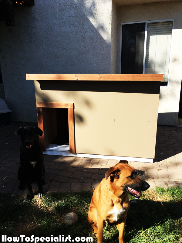 How-to-build-a-XXL-dog-house